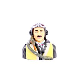 1/6 WWII American Bust pilot