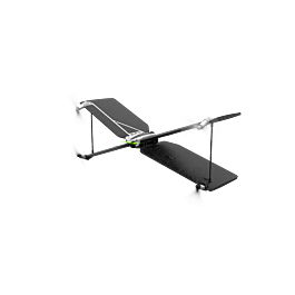 Parrot Swing with Flypad