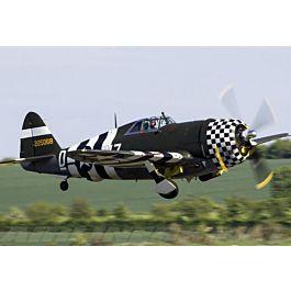 """TopRC P-47 Snafu 96"""" 2438mm full composite ARF kit"""